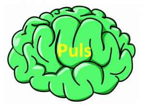 Hjerner_puls