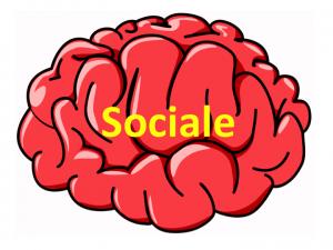 Hjerner_sociale