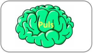 Tekstboks puls hjerne