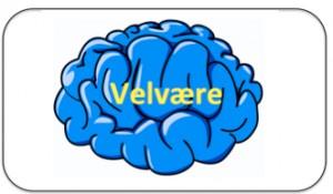 Tekstboks velvære hjerne