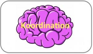 Tekstboks_koordination hjerne