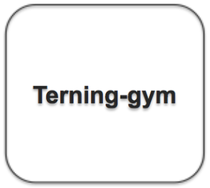 Terning-gym