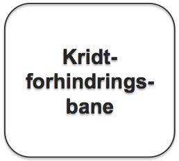 Tekstboks_Kridtforhindringsbane